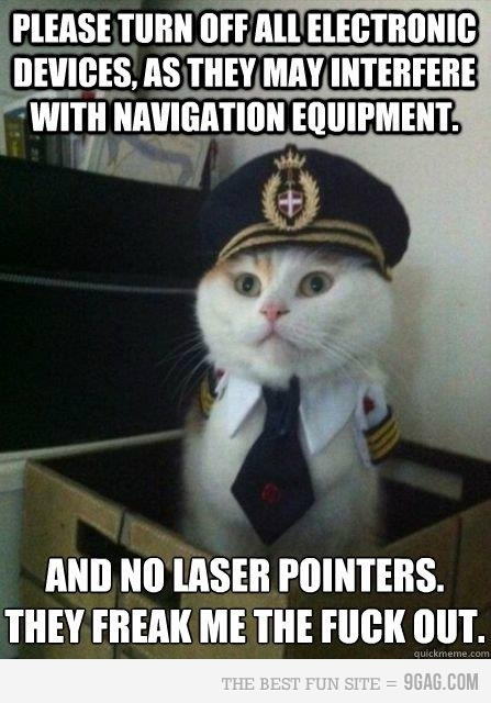 Captain Cat is ready to take off.