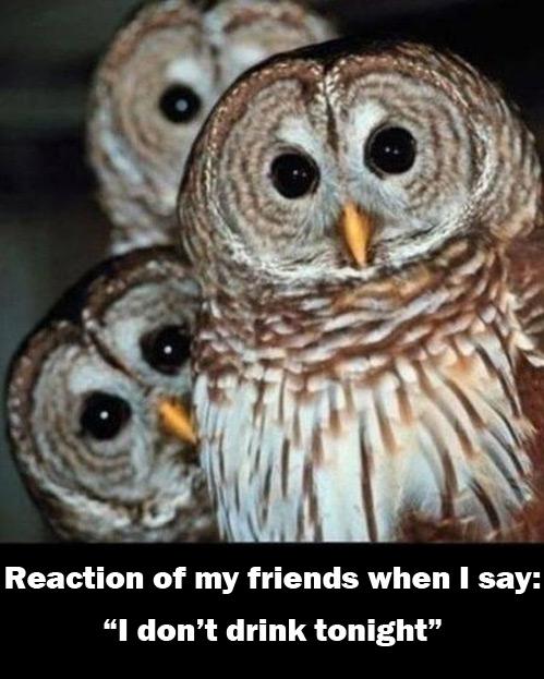Reaktion meiner Freunde